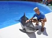 Фото с дельфином