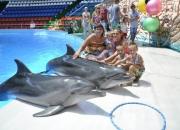 Фото с дельфинами